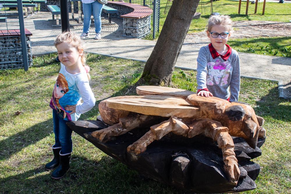 drewniany owad w parku botanicznym Brwinów